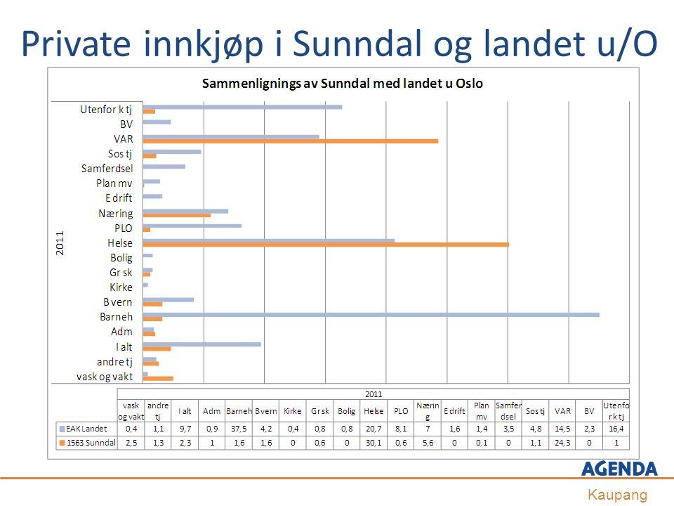 Private innkjøp i Sunndal og landet u/O Kaupang
