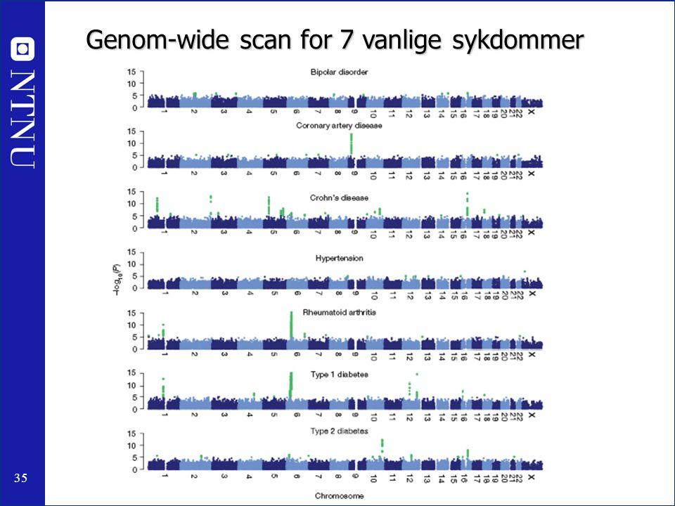 35 Genom-wide scan for 7 vanlige sykdommer
