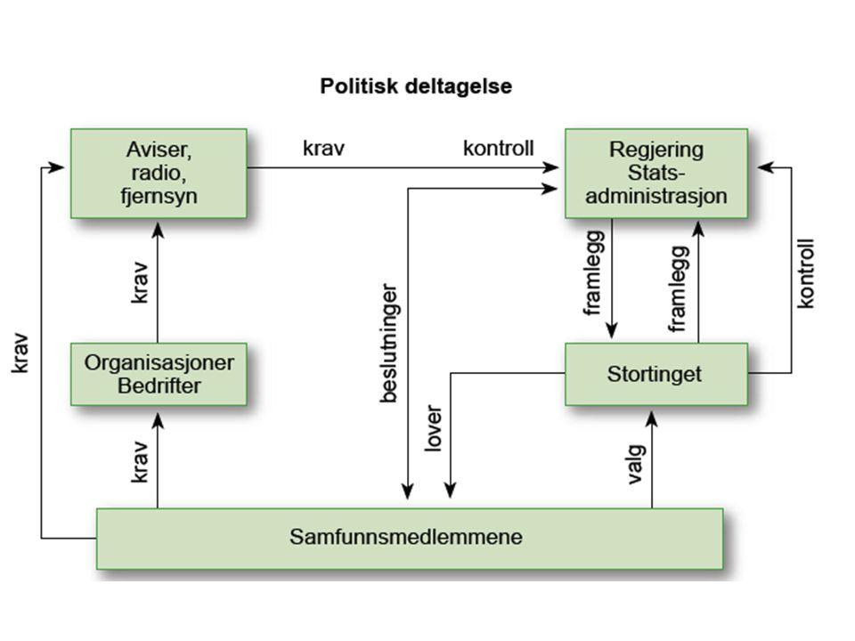 Politisk deltakelse Generelt er det små forskjeller mellom kjønnene når det gjelder politisk deltakelse.