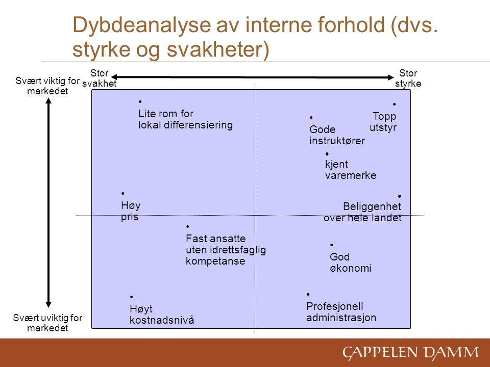 Dybdeanalyse av interne forhold (dvs.