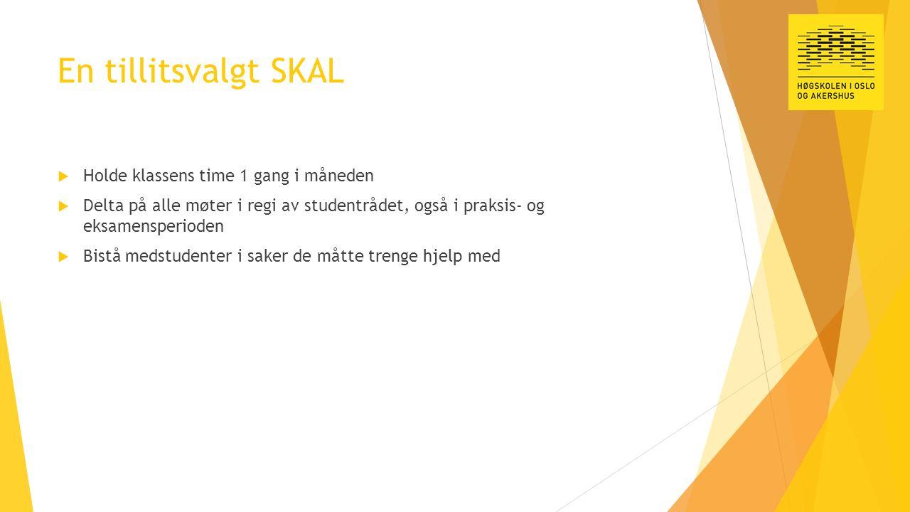 En tillitsvalgt SKAL  Holde klassens time 1 gang i måneden  Delta på alle møter i regi av studentrådet, også i praksis- og eksamensperioden  Bistå medstudenter i saker de måtte trenge hjelp med