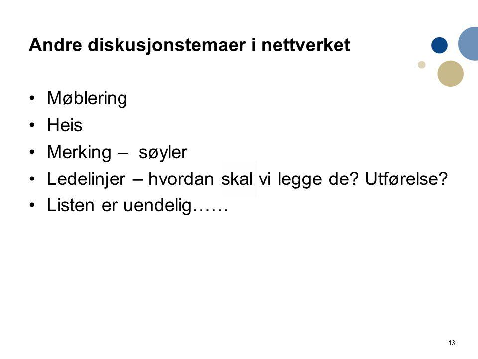 13 Andre diskusjonstemaer i nettverket Møblering Heis Merking – søyler Ledelinjer – hvordan skal vi legge de.