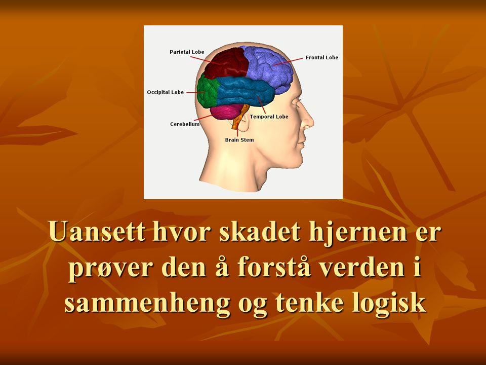 Uansett hvor skadet hjernen er prøver den å forstå verden i sammenheng og tenke logisk