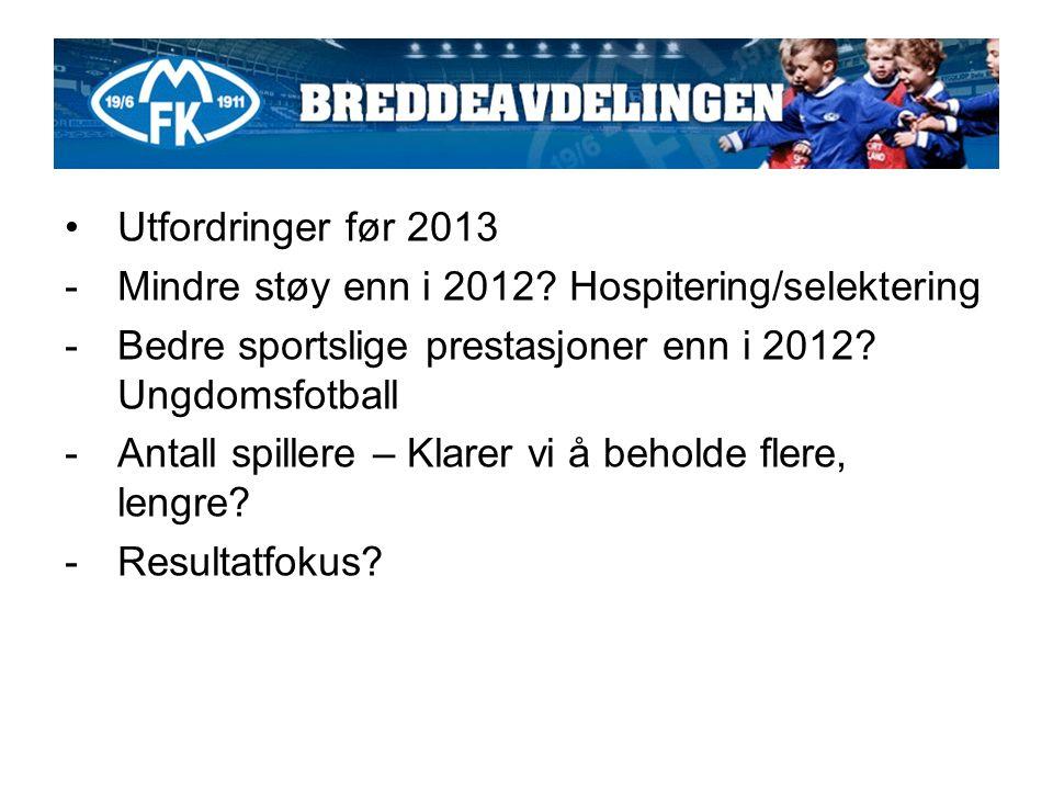 Utfordringer før 2013 -Mindre støy enn i 2012.