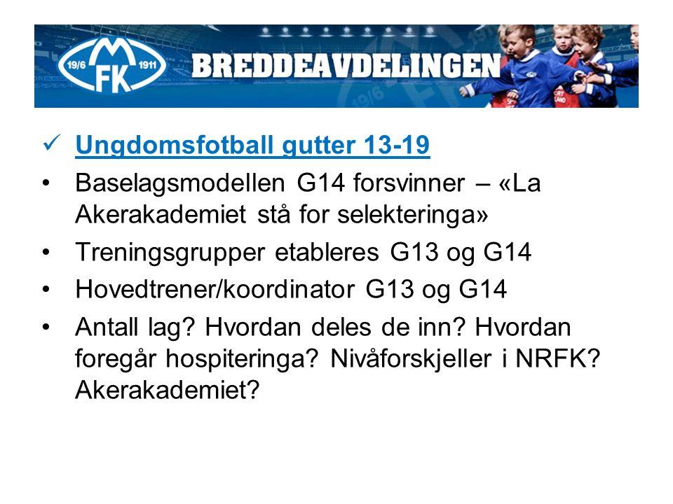 Ungdomsfotball gutter 13-19 Baselagsmodellen G14 forsvinner – «La Akerakademiet stå for selekteringa» Treningsgrupper etableres G13 og G14 Hovedtrener/koordinator G13 og G14 Antall lag.