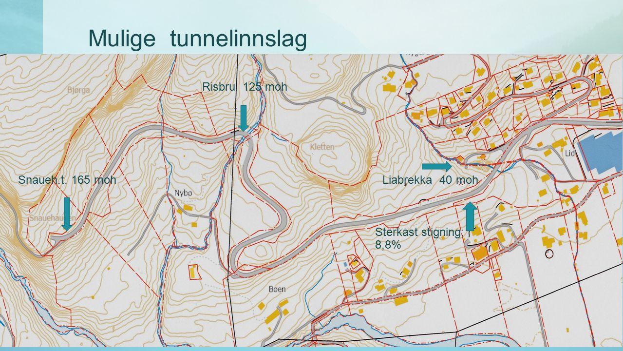 Mulige tunnelinnslag Liabrekka 40 moh Risbru 125 moh Snaueh.t. 165 moh Sterkast stigning: 8,8%