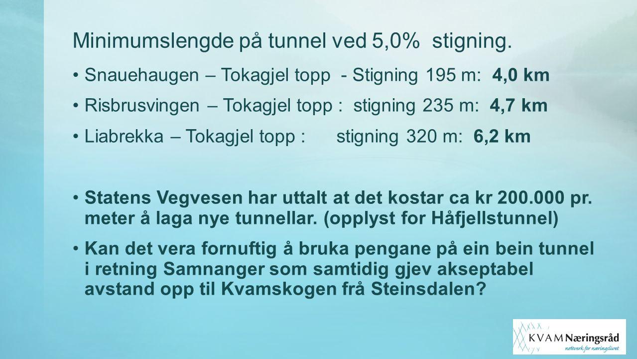 Minimumslengde på tunnel ved 5,0% stigning. Snauehaugen – Tokagjel topp - Stigning 195 m: 4,0 km Risbrusvingen – Tokagjel topp : stigning 235 m: 4,7 k