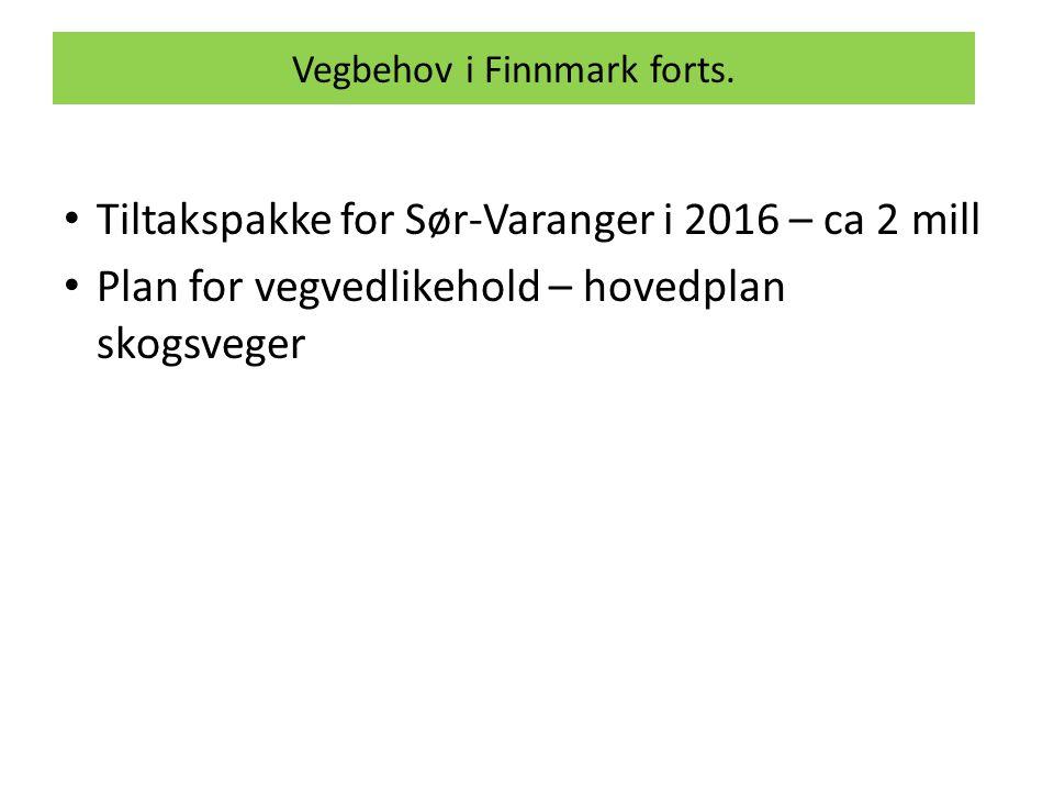 Vegbehov i Finnmark forts.