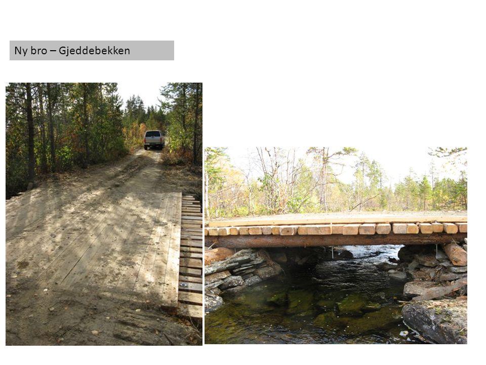 Ny bro – Gjeddebekken