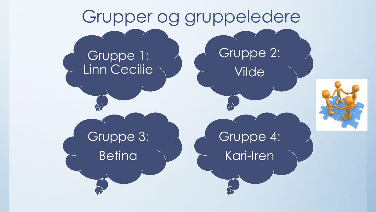Grupper og gruppeledere Gruppe 1: Linn Cecilie Gruppe 2: Vilde Gruppe 3: Betina Gruppe 4: Kari-Iren