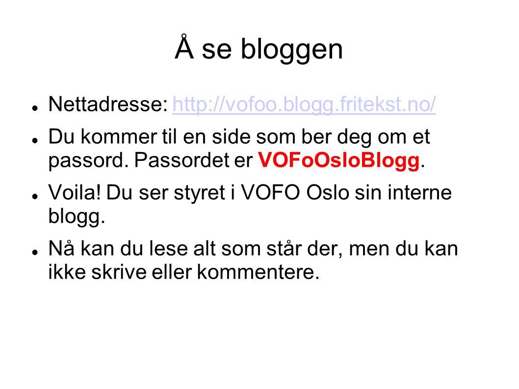 Å se bloggen Nettadresse: http://vofoo.blogg.fritekst.no/http://vofoo.blogg.fritekst.no/ Du kommer til en side som ber deg om et passord.