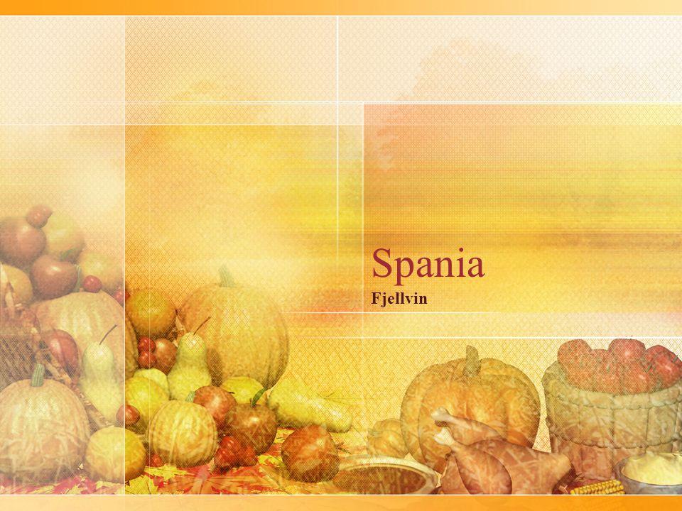 Vinene jeg har plukket ut i kveldens smaking kommer fra fire ulike produsenter i tre ulike deler av Spania.