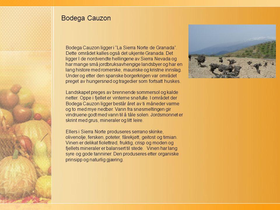 Bodega Cauzon Bodega Cauzon ligger i La Sierra Norte de Granada .