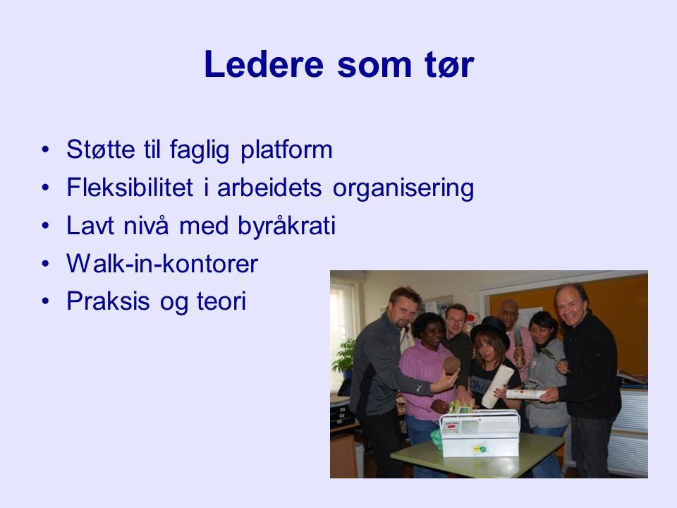 Ledere som tør Støtte til faglig platform Fleksibilitet i arbeidets organisering Lavt nivå med byråkrati Walk-in-kontorer Praksis og teori