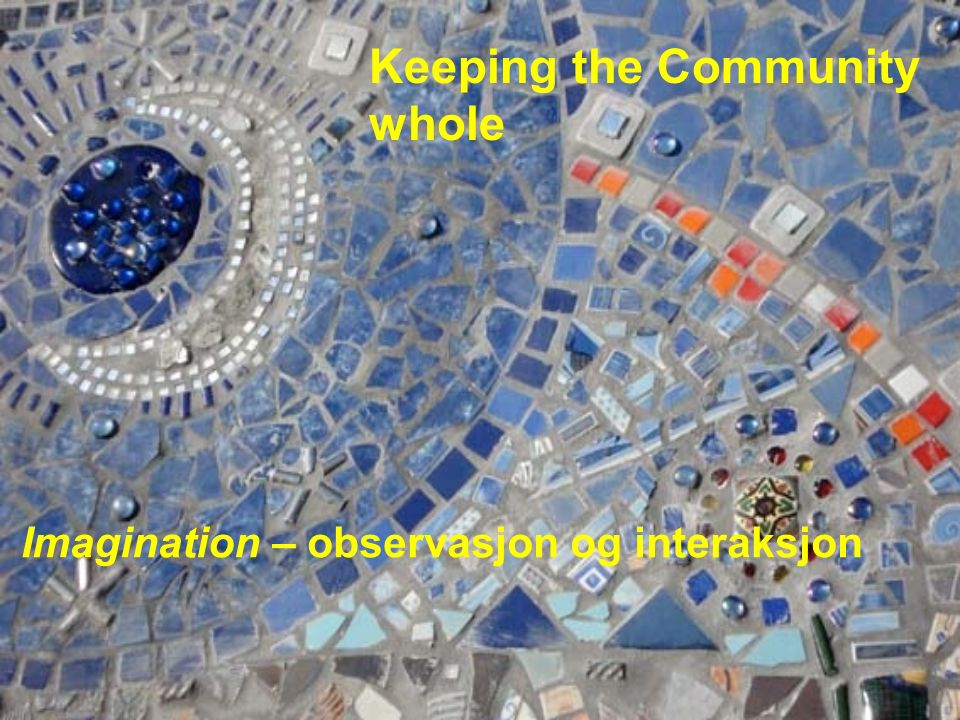 Keeping the Community whole Imagination – observasjon og interaksjon