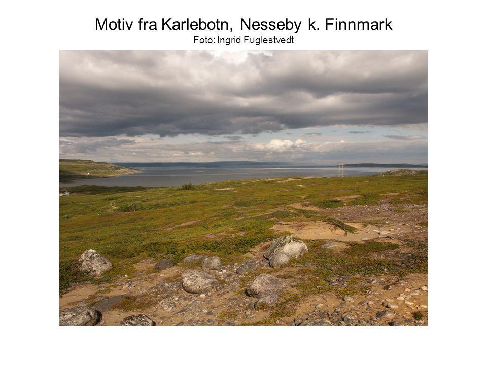 Motiv fra Karlebotn, Nesseby k. Finnmark Foto: Ingrid Fuglestvedt