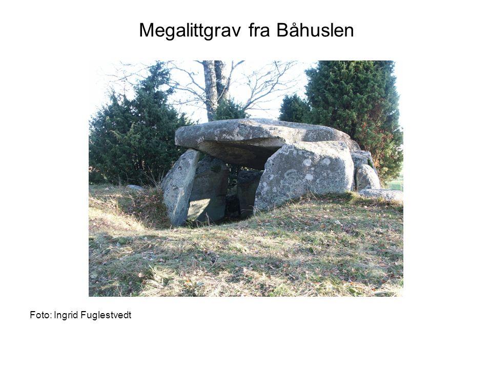 Megalittgrav fra Båhuslen Foto: Ingrid Fuglestvedt
