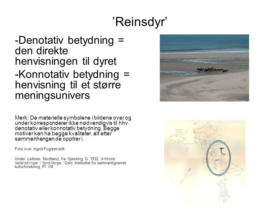 'Reinsdyr' -Denotativ betydning = den direkte henvisningen til dyret -Konnotativ betydning = henvisning til et større meningsunivers Merk: De materiel