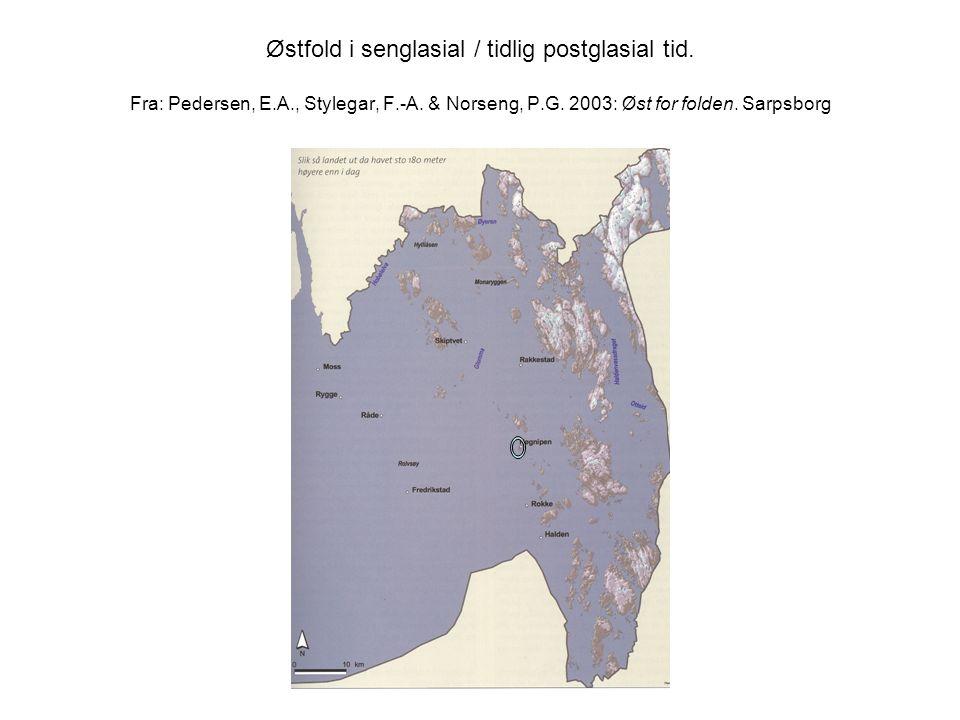 Østfold i senglasial / tidlig postglasial tid. Fra: Pedersen, E.A., Stylegar, F.-A. & Norseng, P.G. 2003: Øst for folden. Sarpsborg