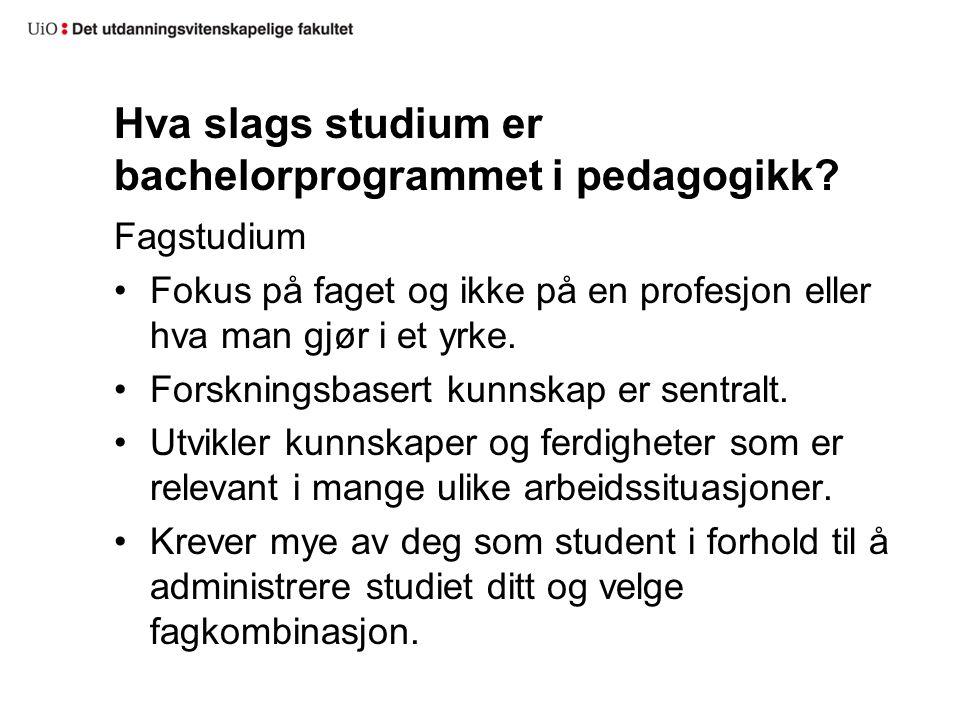 Hva slags studium er bachelorprogrammet i pedagogikk.