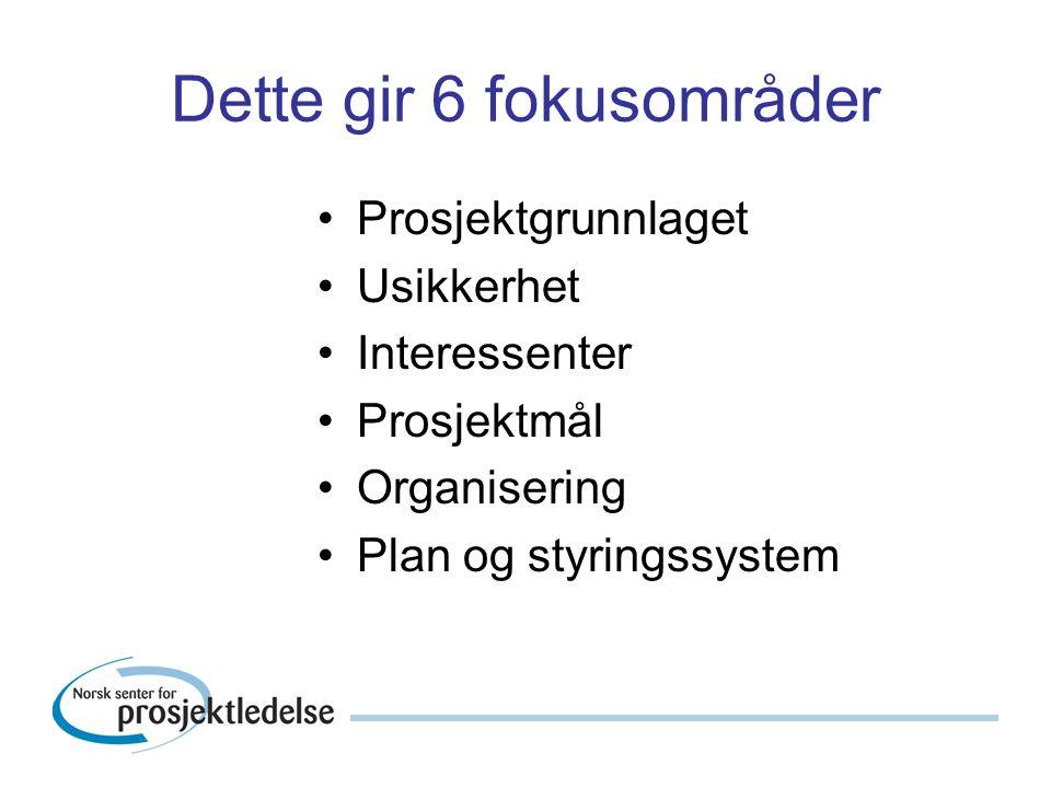 Dette gir 6 fokusområder Prosjektgrunnlaget Usikkerhet Interessenter Prosjektmål Organisering Plan og styringssystem