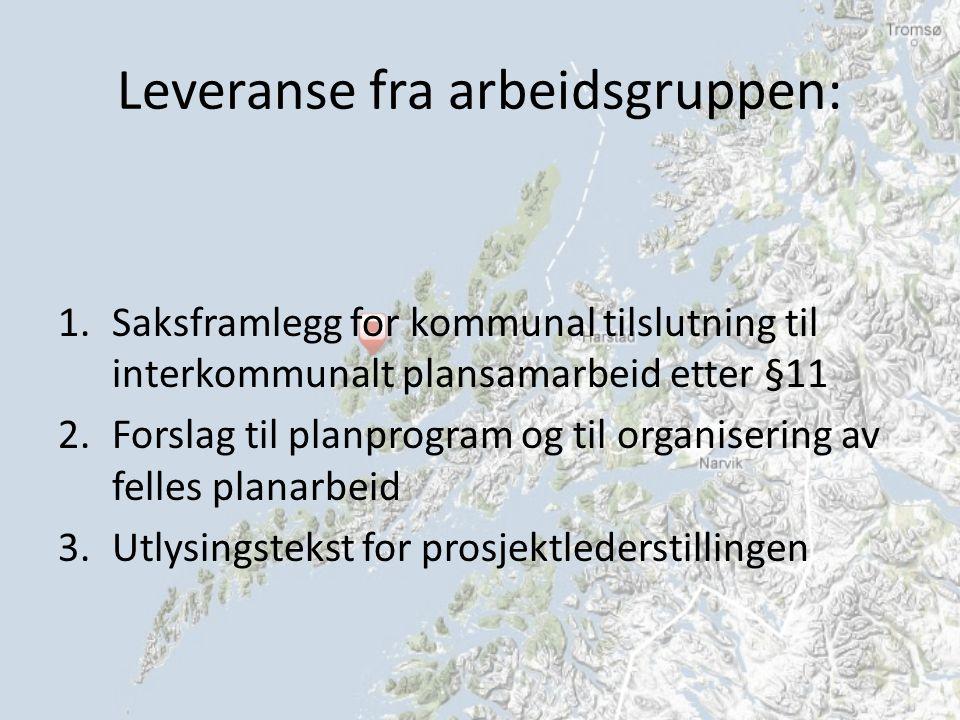 Leveranse fra arbeidsgruppen: 1.Saksframlegg for kommunal tilslutning til interkommunalt plansamarbeid etter §11 2.Forslag til planprogram og til organisering av felles planarbeid 3.Utlysingstekst for prosjektlederstillingen