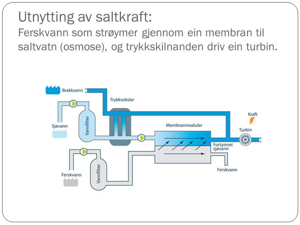 Utnytting av saltkraft: Ferskvann som strøymer gjennom ein membran til saltvatn (osmose), og trykkskilnanden driv ein turbin.