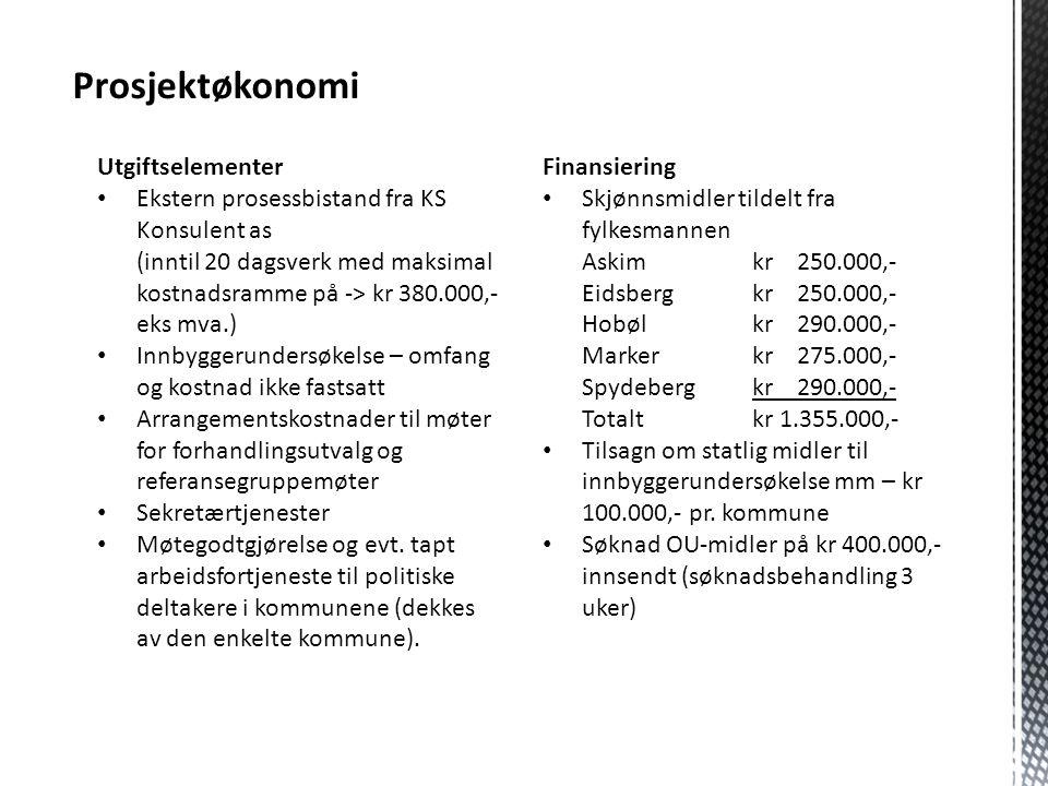 Prosjektøkonomi Utgiftselementer Ekstern prosessbistand fra KS Konsulent as (inntil 20 dagsverk med maksimal kostnadsramme på -> kr 380.000,- eks mva.