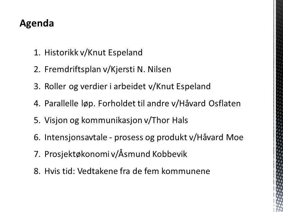 Agenda 1.Historikk v/Knut Espeland 2.Fremdriftsplan v/Kjersti N. Nilsen 3.Roller og verdier i arbeidet v/Knut Espeland 4.Parallelle løp. Forholdet til