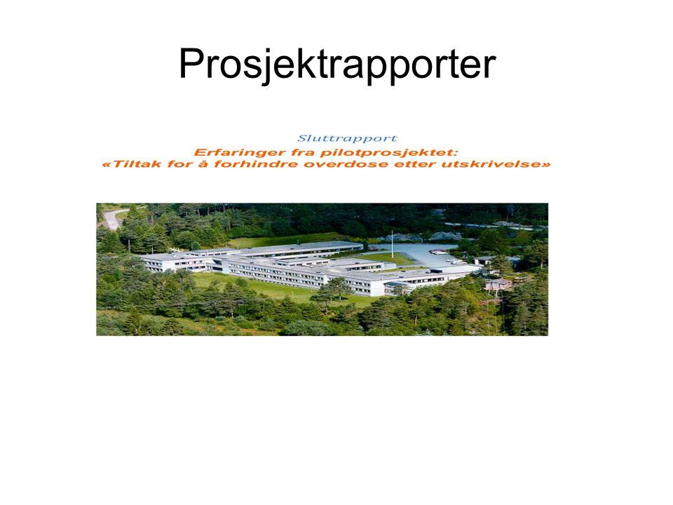 Prosjektrapporter