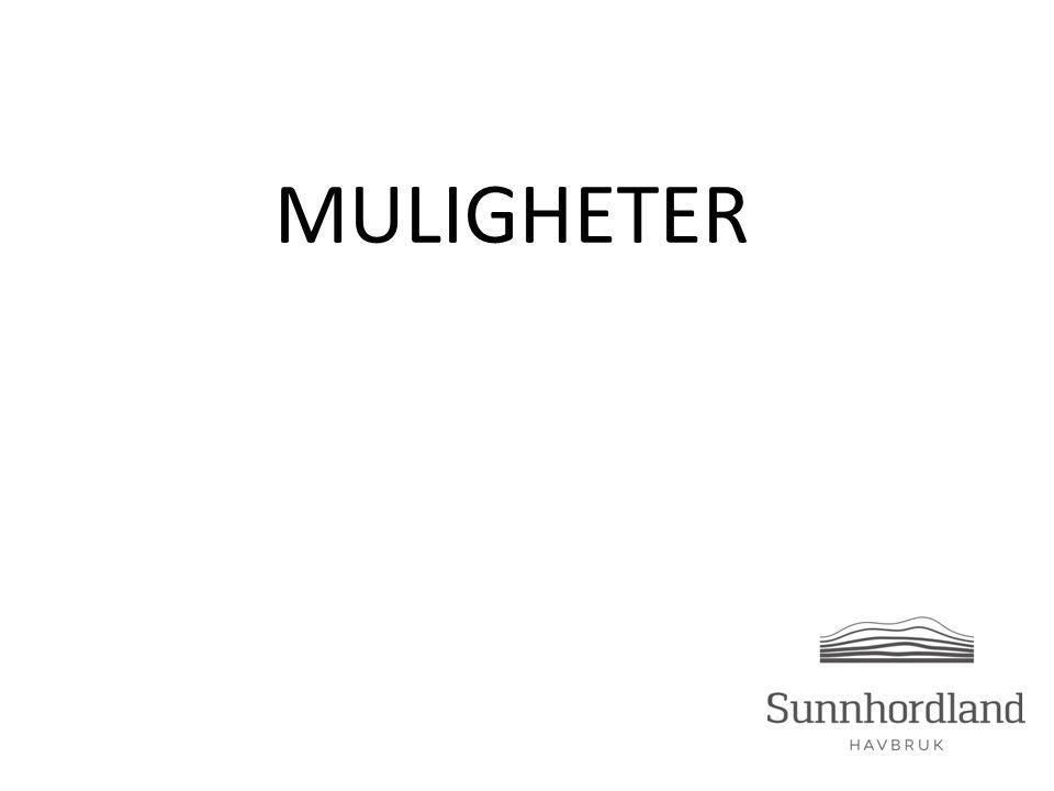 MULIGHETER
