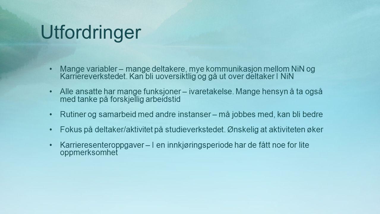 Utfordringer Mange variabler – mange deltakere, mye kommunikasjon mellom NiN og Karriereverkstedet.