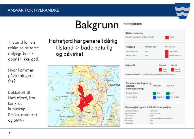 Bakgrunn Hafrsfjord har generelt dårlig tilstand -> både naturlig og påvirket 3 Tilstand for en rekke prioriterte miljøgifter -> oppnår ikke god.