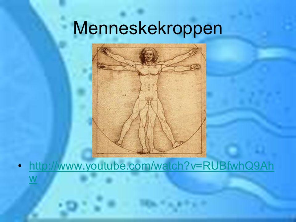 Menneskekroppen http://www.youtube.com/watch v=RUBfwhQ9Ah w