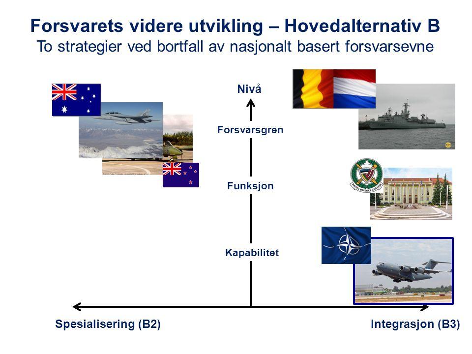 Forsvarets videre utvikling – Hovedalternativ B To strategier ved bortfall av nasjonalt basert forsvarsevne Spesialisering (B2)Integrasjon (B3) Nivå Forsvarsgren Funksjon Kapabilitet