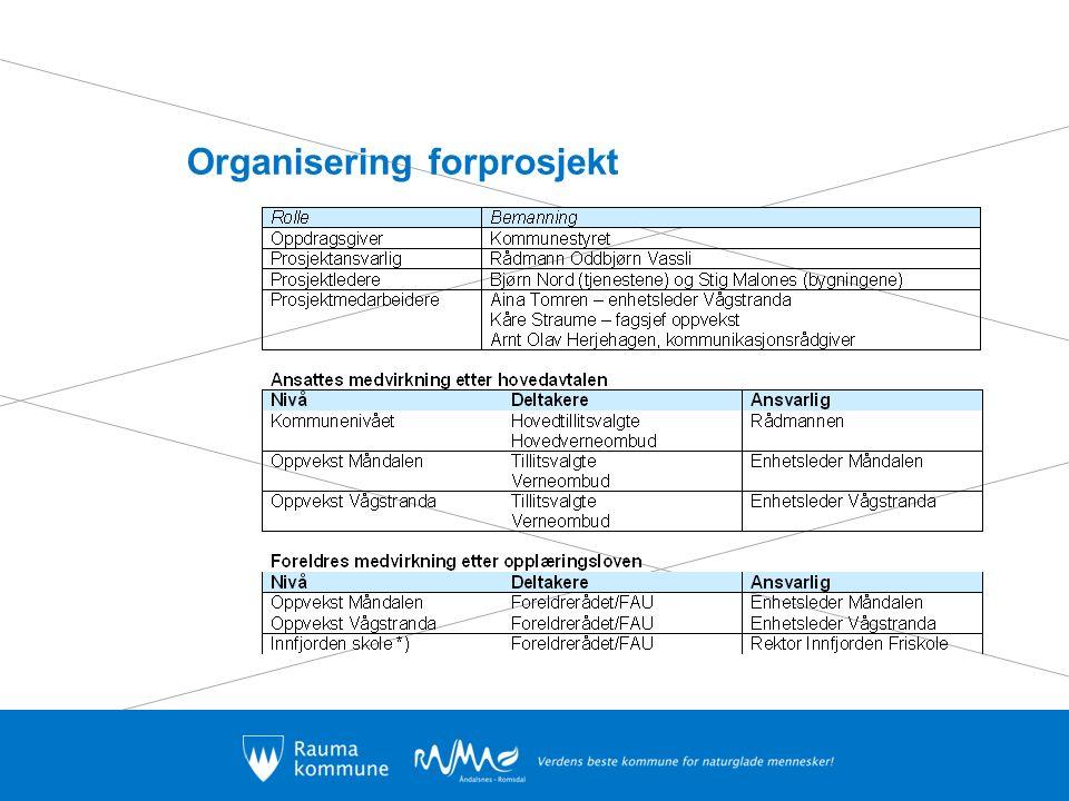 Organisering forprosjekt