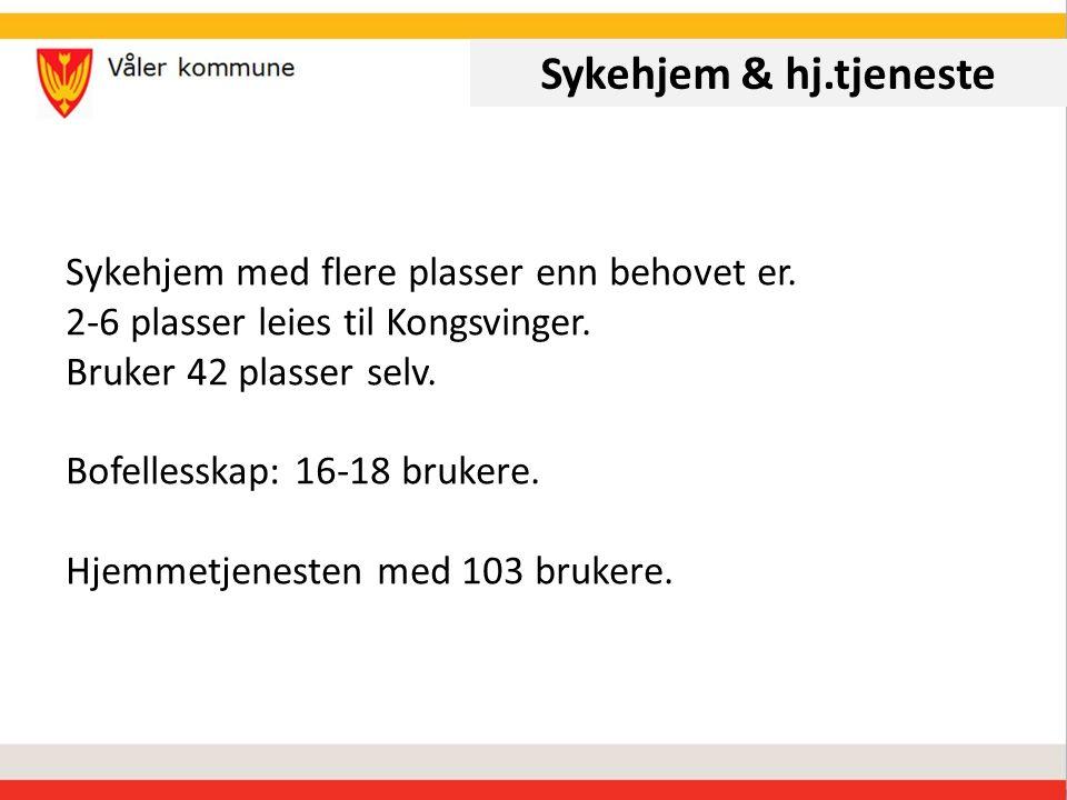 Sykehjem & hj.tjeneste Sykehjem med flere plasser enn behovet er.