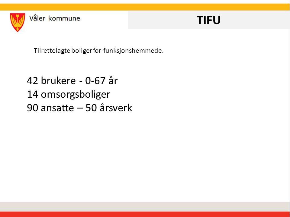 TIFU 42 brukere - 0-67 år 14 omsorgsboliger 90 ansatte – 50 årsverk Tilrettelagte boliger for funksjonshemmede.