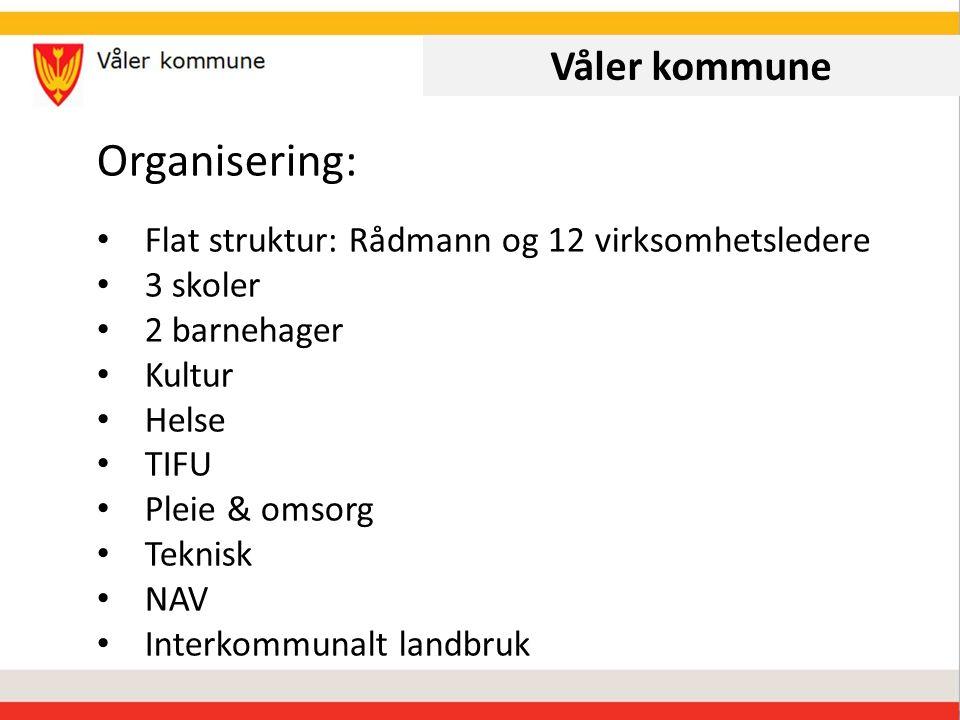 Våler kommune Organisering: Flat struktur: Rådmann og 12 virksomhetsledere 3 skoler 2 barnehager Kultur Helse TIFU Pleie & omsorg Teknisk NAV Interkommunalt landbruk