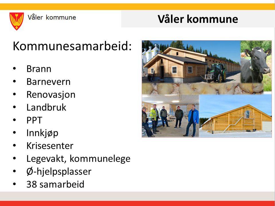 Våler kommune Kommunesamarbeid: Brann Barnevern Renovasjon Landbruk PPT Innkjøp Krisesenter Legevakt, kommunelege Ø-hjelpsplasser 38 samarbeid