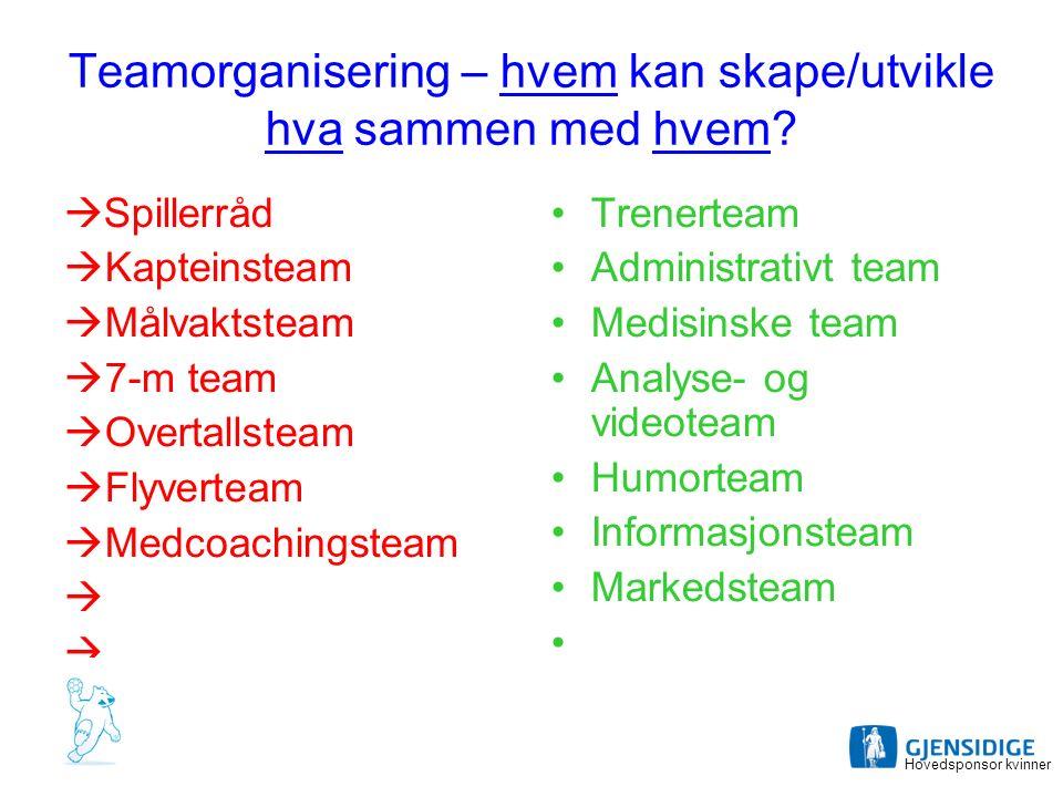Teamorganisering – hvem kan skape/utvikle hva sammen med hvem.
