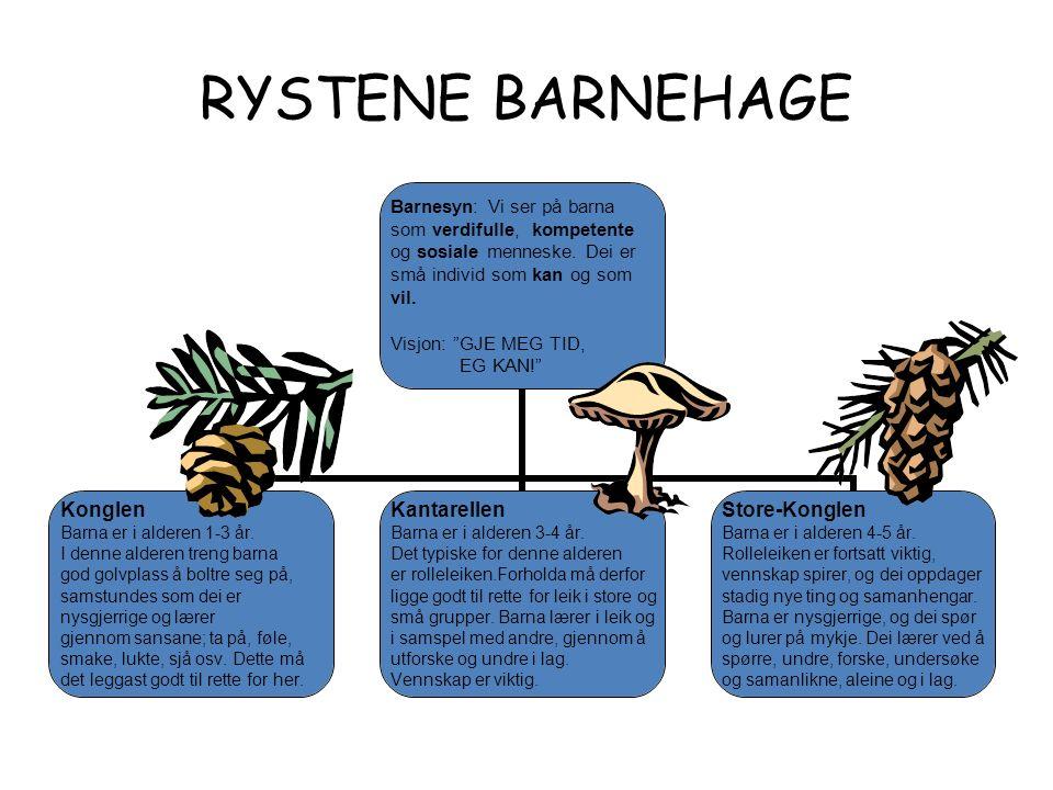 RYSTENE BARNEHAGE Barnesyn: Vi ser på barna som verdifulle, kompetente og sosiale menneske.