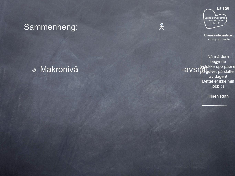 Sammenheng: Makronivå -avsnitt Janne og Geir sitter i et tre.