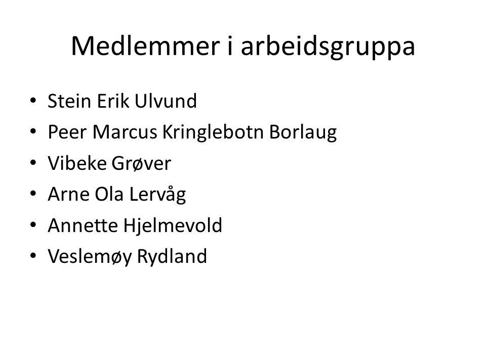 Medlemmer i arbeidsgruppa Stein Erik Ulvund Peer Marcus Kringlebotn Borlaug Vibeke Grøver Arne Ola Lervåg Annette Hjelmevold Veslemøy Rydland