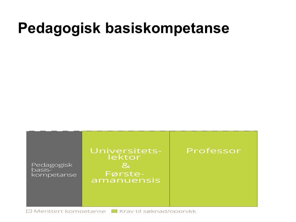 Pedagogisk basiskompetanse