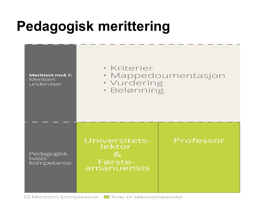 Pedagogisk merittering