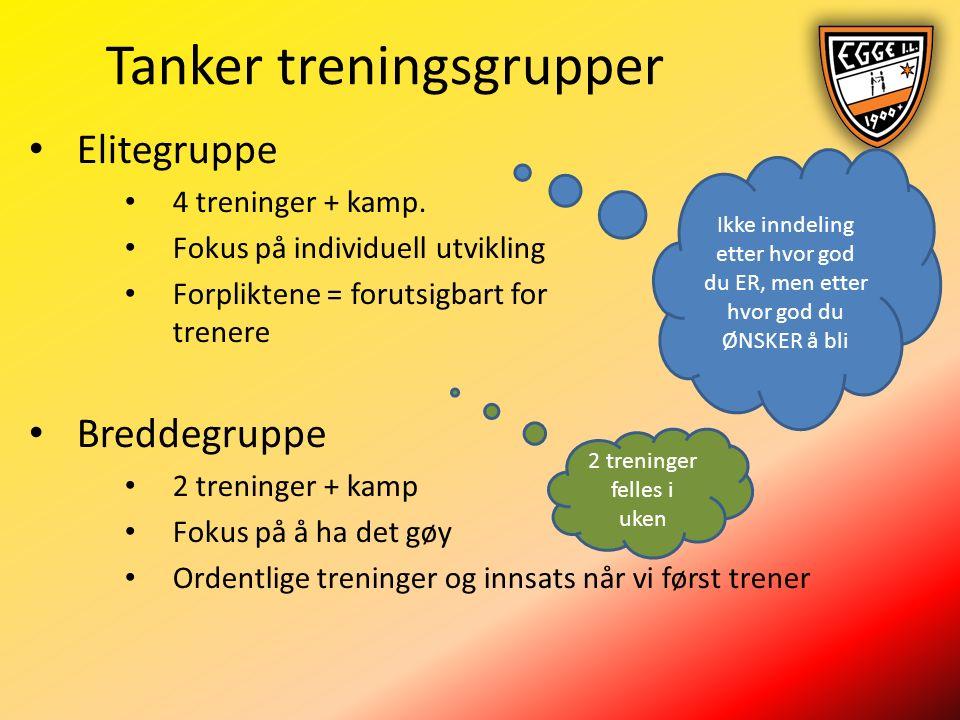 Tanker treningsgrupper Elitegruppe 4 treninger + kamp.