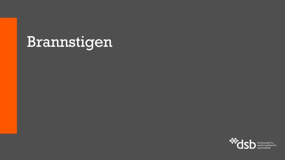 Deltakere i nasjonalt brukerforum for BRIS NavnVirksomhet Odd EllingsenDrammensregionens brannvesen, NBLF Odd Johannes BådsvikHaugesund brannvesen, NBLF Håvard SætherNord-trøndelag 110-sentral, 110-forum Gerd IsaksenFinnmark 110-sentral, 110-forum Roger AlneNedre Romerike brann- og redningsvesen Rune LarsenMosseregionen interkommunale brann- og redning Anne KløwOslo brann og redningsetat Arnt E.