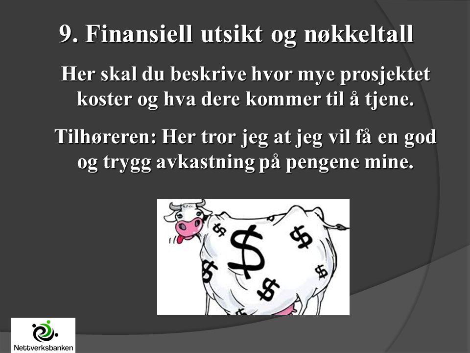9. Finansiell utsikt og nøkkeltall Her skal du beskrive hvor mye prosjektet koster og hva dere kommer til å tjene. Tilhøreren: Her tror jeg at jeg vil