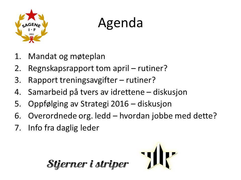 Agenda 1.Mandat og møteplan 2.Regnskapsrapport tom april – rutiner.